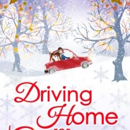Driving Home for Christmas by A.L. Michael